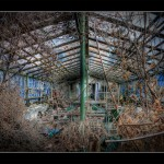 4-Overgrown-School-Greenhouse-at-Pripyat-School